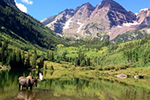 The Maroon Bells and Bull Moose